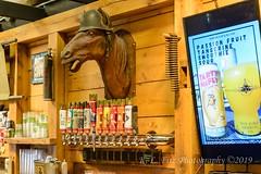 War Horse (kevnkc2) Tags: stdntsdoncooper lightroom newyork geneva senecalake summer winery brewery vacation lake castle nikon d610 tamron 2470mmg2 sp2470mmf28divcusdg2a032n