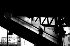 Into the tube (pascalcolin1) Tags: paris13 homme man métro subway tube lumière light escalier stairs vitres windows lines lignes photoderue streetview urbanarte noiretblanc blackandwhite photopascalcolin 5omm canon