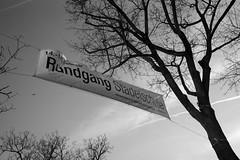 Städelschule Rundgang 2020-bw_20200215_3419.jpg (Barbara Walzer) Tags: kunst städelschulerundgang2020