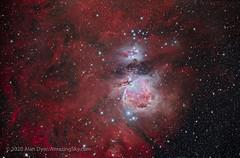 The Orion and Running Man Nebulas (Amazing Sky Photography) Tags: canoneosra hnt150 hyperbolicnewtonian luminositymask m42 m43 messier ngc197357 ngc1980 ngc1981 optolonglenhance orion photoshop runningman sharpstar starshrink autoalign dualband emission exposureblend filter highpasssharpening nebula reflection