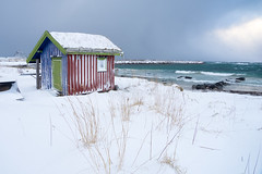 Winter by the sea (harald.bohn) Tags: bleik vinter winter hav sea ocean small house cottage skur hytte uvær storm gale