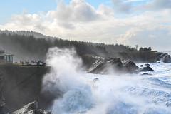 Shore Acres (pbandy) Tags: ocean nature oregon tides waves seascape landscape