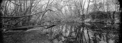 río jarama (Antonio GB) Tags: 6x17 malefic6x17 panorámica panoramic nikkorsw654 ilfordhp5 d76 epsonv800 silverfast filmisnotdead film carrete analógico analogue analoguephotography