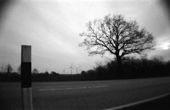 a walk long enough to get a blister on my foot on January 12th (Der Ohlsen) Tags: lasardina seapride analog 35mm kb bw film agfaapx100 schleswigholstein deutschland germany