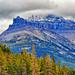 Mount Niblock