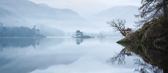reach out (akh1981) Tags: panorama amateurphotography atmosphere beautiful benro mountains morning mist fells fog travel trees tranquil tamron rocks reflections nisi nikon nature nisifilters nationalheritage nationalpark nationaltrust nationalheritagesite landscape lakedistrict lake sunrise sky uk unesco outdoors cumbria clouds countryside calm