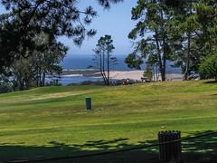 Morro Bay Golf Course 04 (davidseibold) Tags: america california morrobaygolfcourse morrobaystatepark pacificocean sanluisobispocounty usa unitedstates jfflickr person photosbydavid plant postedonflickr saltwater sandspit sky stranger tree water