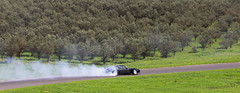 Happy Laps - Luddenham Raceway 2020-47 (andrew edgar .......) Tags: luddenham raceway bugatti veyron mclaren porsche drift laps sydney aystralia haltech sunshine green track