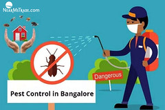 Pest-Control-in-Bangalore (NearMeTrade – Local and Global Business Listing) Tags: nearmetrade service providers exporters manufacurers firms businesses pest control bangalore