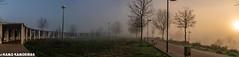 parque juan tenorio, mirador de huerta otea (K@moeiras) Tags: kamo huertaotea niebla parquejuantenorio miradorhuertaotea salamanca españa