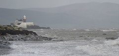 """...And the shallow waters aflutter with wind..."" (Michael C. Hall) Tags: fenit kerry ireland island samphire beach sea storm waves horses white coast mountain lighthouse"