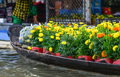 Wooden boat carrying flowers at the market (phuong.sg@gmail.com) Tags: activity amazing asia asian atmosphere beautiful beauty bloom blossom boat bouquet cantho canal chanel color colorful colour day delta flea float floating floral flower flowersmarket foating green grow harvest landscape landscaping lively market mekong morning natural people river row rowing scene sunny trade travel vietnam vietnamese water wooden yellow