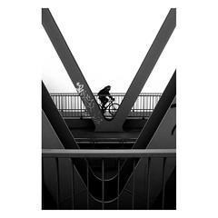 . (halagabor) Tags: bnw blackandwhite monochrome bridge budapest hungary ilford ilfordhp5 ilfordfilm film filmisnotdead filmcamera filmisalive filmphotography ishootfilm istillshootfilm 35mm pushed 1600 nikon nikonfe2 street streetphoto streetphotography city citylife urban bike biker bicycle fog foggy mist misty