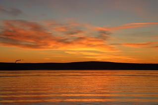 Sunrise, Aker Brygge