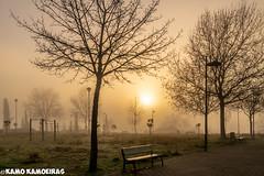 amaneciendo en la bruma (K@moeiras) Tags: kamo huertaotea niebla parquejuantenorio miradorhuertaotea salamanca españa