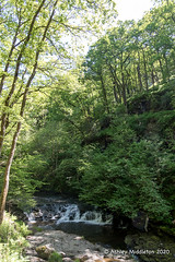 River Neath (Ashley Middleton Photography) Tags: brecknockshire pontneddfechan copse europe river riverneath typesofwater unitedkingdom wales water waterfallcountry whitewater woodland