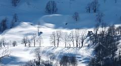 Col du Soulor (Hautes-Pyrénées, Occitanie, Fr) (caminanteK) Tags: neige col du soulor hautespyrénées occitanie midipyrénées france blanc