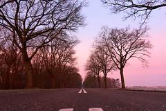 Nulweg (Jos Mecklenfeld) Tags: nederland niederlande natur nature natuur sonya6000 westerwolde winter sunrise sonnenaufgang zonsopkomst selp1650 landscape landschaft landschap terapel groningen netherlands road weg street straat strase