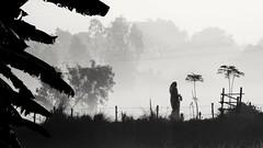 (Kris Lantijn) Tags: woman fog bw silhouette india mayapur exotic panasonictz60 morning sunlight