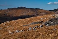 Hiraodai Hill_3 (Yskem) Tags: zeiss milvus landscape hill