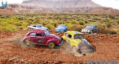 A Heated Moment (KBCFox1994) Tags: volkswagen bug beetle race ford fairlane ranchero desert dust