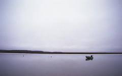 img446 (ToMeKKKK) Tags: film filmphotography filmisnotdead filmshooterscollective onfilm fujifilm fuji analog analogphoto analogue analoguepeople c41 manuallens manualfocus 135 nikkor2828mm