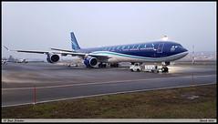 AIRBUS A340 642 Azerbaidjan Airlines 4K-A108 779  Zurich janvier 2020 (paulschaller67) Tags: airbus a340 642 azerbaidjan airlines 4ka108 779 zurich janvier 2020