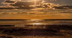 ¡Déjame bajar al mar! (Jesus_l) Tags: europa españa cádiz tarifa playa atardecer jesúsl
