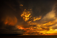 Sunset And Upcoming Storm (Markus Branse) Tags: sunset darwin waterfront northern territory australia mammatus clouds sonnenuntergang sun sol sonne wolken cloud wolke abendstimmung abendrot eveing red rood rot orange wetter gewitter storm weather weer meteo unwetter meer water ocean ozean australien austrlia austral aussei oz mood foto fotos pic picture photo photos sturm thunderstorm gewittrig natur natuire street strase