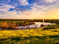 atardecer de invierno? (la_magia) Tags: paisaje naturaleza flores arboles lago atardecer invierno amarillo azul nuebes mostoles madrid españa agua campo paz relax