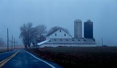 fog and rain (bluebird87) Tags: road fog dx0 c41 epson v800 kodak portra lightroom nikon f5