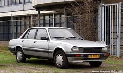 Peugeot 505 GL 1986 (XBXG) Tags: rb78ld peugeot 505 gl 1986 peugeot505 mollerusweg haarlem waarderpolder nederland holland netherlands paysbas youngtimer old classic french car auto automobile voiture ancienne française france frankrijk vehicle outdoor