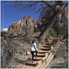 Upward Bound (Runemaker) Tags: zion zionnationalpark utah trail hiking hiker woman mountains redrock peaks cliffs nikon d750 nature landscape