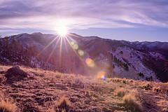 Sierra Blanca sun flare (joncutrer) Tags: newmexico mountains sun sunflare lensflare hiking nature outdoors sierrablanca winter ruidoso landscape ilce7m3 a7iii a7m3 sonya7iii sigma35mmf14 travel altitude sigmaartlens sigma