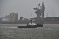 Experience (Hugo Sluimer) Tags: harbour haven harbourphotography harbourphoto havenfotografie havenfoto zuidholland holland nederland onzehaven portofrotterdam port shipspotting scheepvaart scheepvaartfotografie nikon nikond500 d500