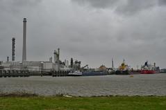 2e Petroleumhaven (Hugo Sluimer) Tags: harbour haven harbourphotography harbourphoto havenfotografie havenfoto zuidholland holland nederland onzehaven portofrotterdam port shipspotting scheepvaart scheepvaartfotografie nikon nikond500 d500