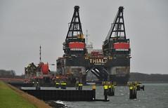 Thialf (Hugo Sluimer) Tags: harbour haven harbourphotography harbourphoto havenfotografie havenfoto zuidholland holland nederland onzehaven portofrotterdam port shipspotting scheepvaart scheepvaartfotografie nikon nikond500 d500