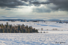 Archive 27 (guysamsonphoto) Tags: guysamson landscape paysage snow neige winter hiver froid cold clouds nuages