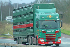 Scania R500 Wm Armstrong Livestock PX68 KLK (SR Photos Torksey) Tags: transport truck haulage hgv lorry lgv logistics road commercial vehicle freight traffic scania r500 livestock armstrong