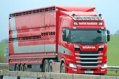 Scania David Barker Livestock (SR Photos Torksey) Tags: transport truck haulage hgv lorry lgv logistics road commercial vehicle freight traffic scania david barker livestock