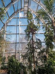 P1029941 (Trude Graz) Tags: botanischergarten graz architektur