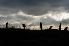 A Sunday Morning Game (jillyspoon) Tags: golf golfcourse silhouette sony sonya7iii sonyalpha golfers golfbag clouds light sport sportsman sportsmen horizon swing
