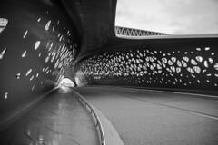 Bridge (Phil*ippe) Tags: antwerp antwerpen blackwhite black white zwartwit wit zwart noir noiretblanc blanc bridge architecture parkbridge noord brug