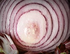 Eat Your Veggies! (Jack Heald) Tags: vegetables macromondays macro veggies onion red micro nikon d750 60mm heald jack