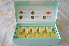 Lotus · Tea Forté (noellesussman) Tags: tea té teaforte