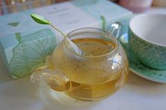 Vanilla Pear (noellesussman) Tags: tea té teaforte