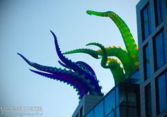 Day Of The Tentacle - IMG_4669 - Edited (406highlander) Tags: canonpowershotg1xmkii powershotg1xmkii powershot g1x aberdeen scotland tentacle inflatable art colour marischalsquare broadstreet city urban building glass modern spectra festivaloflight canon
