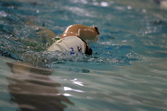IMG_2555 (IronGirl Photos) Tags: mtc swim 2020