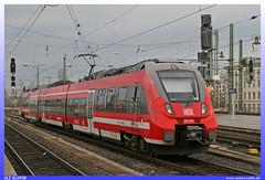 442 650 DB AG (uslovig) Tags: 442 650 db ag deutsch bahn vvo regio vbb zug train eisenbahn railroad railway dresden sachsen saxonia deutschland germany