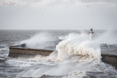 Storm Dennis (99damo) Tags: whitehaven beach blue cumbria cloud cold coast d810 evening harbour pier moody nikon shore water winter waves sky storm dennis stormdennis weather sea rough